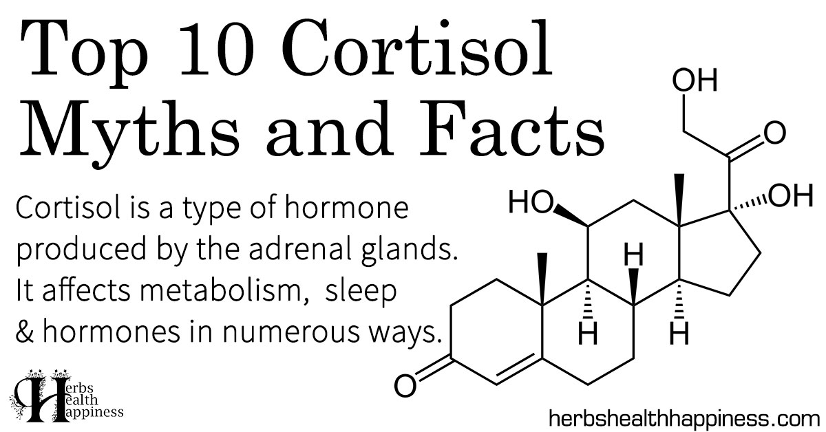 Top 10 Cortisol Myths & Facts