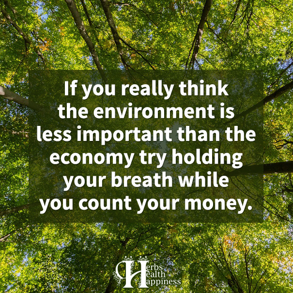If You Really Think The Environment Is Less Important Than The Economy