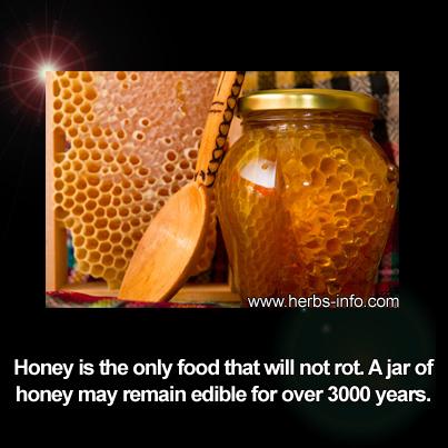 Honey Will Not Rot