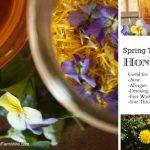 "How To Make Violet And Dandelion ""Spring Tonic"" Honey"