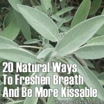 20 Natural Ways To Freshen Breath And Be More Kissable