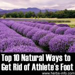Top 10 Natural Ways to Get Rid of Athlete's Foot