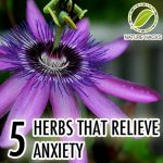 5 Herbs That Relieve Anxiety