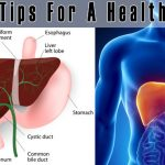 5 Easy Tips For A Healthy Liver