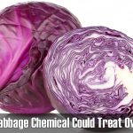 Scientists: Cabbage Chemical Could Treat Ovarian Cancer