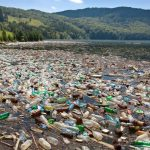 Plastic Bottles Are Slowly Killing You