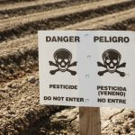 Monsanto Is Suing California For Stating That Roundup Causes Cancer