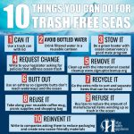 10 Things You Can Do For Trash Free Seas