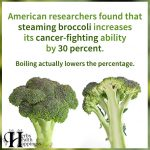 American Researchers Found That Steaming Broccoli