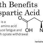 Health Benefits Of Aspartic Acid