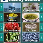 Top 9 Natural Remedies for Kidney Stones