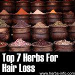 7 Herbs For Hair Loss