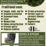 Seaweed (Edible Varieties)
