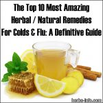 Top 10 Most Amazing Herbal / Natural Remedies For Colds And Flu: A Definitive Guide