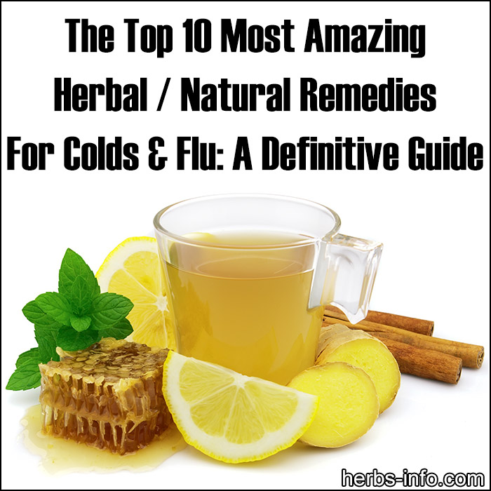 The Top 10 Most Amazing Herbal - Natural Remedies For Colds And Flu