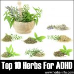 10 Herbs For ADHD