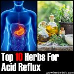 10 Herbs For Acid Reflux