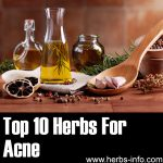10 Herbs For Acne