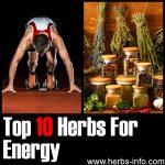 10 Herbs For Energy