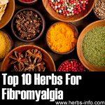 10 Herbs For Fibromyalgia