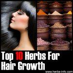 10 Herbs For Hair Growth