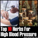 10 Herbs For High Blood Pressure