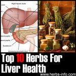 Herbs For The Liver