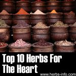 10 Herbs For The Heart