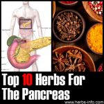 10 Herbs For The Pancreas
