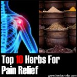 10 Herbs For Pain Relief