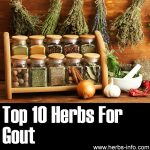 10 Herbs for Gout