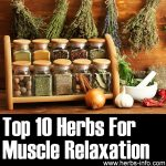 10 Herbs For Muscle Relaxation