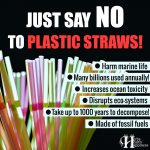 Just Say No To Plastic Straws