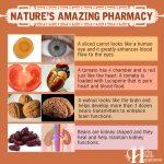 Nature's Amazing Pharmacy